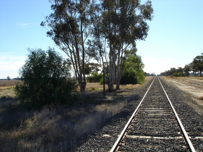 The view looking north towards Deniliquin.