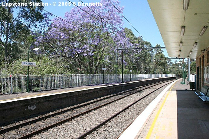 The view looking down across platform 2, with its large flowering Jacaranda tree.